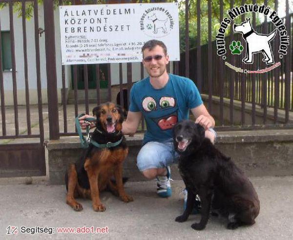 Az állatbarátok által felajánlott adóegyszázalékoknak köszönhetően Anna és Atosz szerető Gazdihoz került