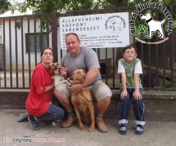 Az állatbarátok által felajánlott adóegyszázalékoknak köszönhetően Azsula és Lili szerető Gazdihoz került