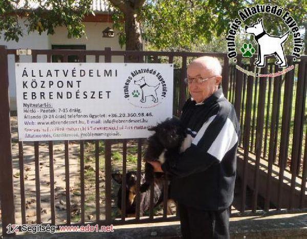 Az állatbarátok által felajánlott adóegyszázalékoknak köszönhetően Torci szerető Gazdihoz került