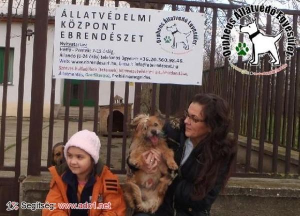 Megmentettük Kapri kutyát!