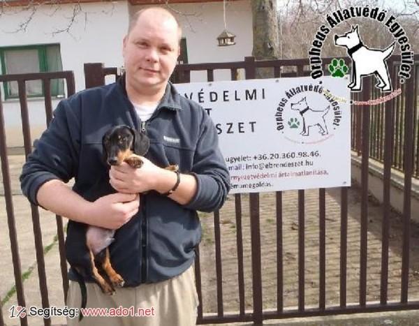 Megmentettük Szimat kutyust!