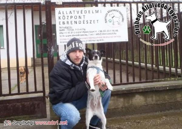 Rudi új Gazdira talált!