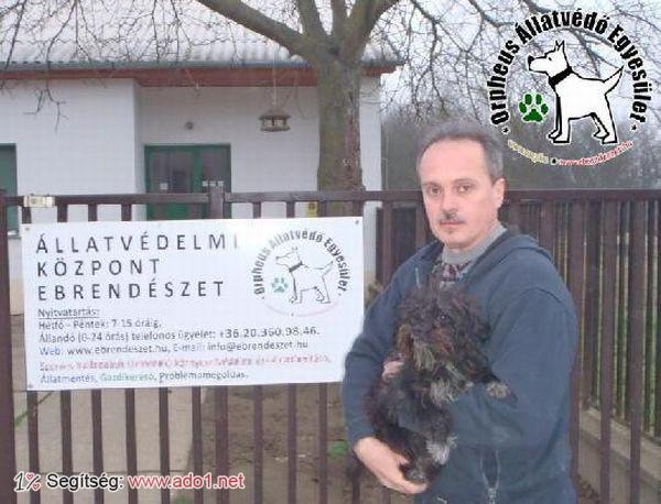 Rudit az állatbarátok adóegyszázalék felajánlásoknak köszönhetően mentettük meg