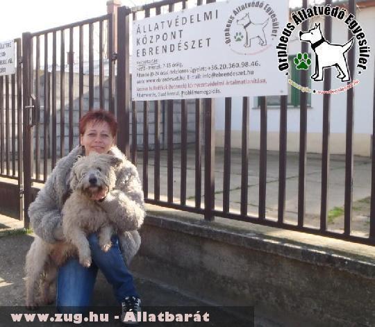 Adó egy százalék támogatásával Tatár szeretõ helyre került