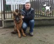 Cuki az állatbarátok adóegyszázalékának köszönhetően Gazdihoz került
