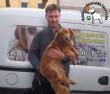 Állatbarátok adó 1 százalékának köszönhetően Gazdihoz került Dixi