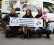 Állatmentés, rehabilitáció - állatvédelmi munkánk mellett más állatvédő szervezeteket is támogatunk