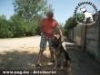 Állatbarátok adó 1 százalékának köszönhetõen Mardel új gazdihoz került